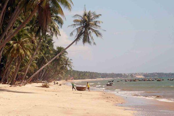 HCMC - MUI NE - DA LAT