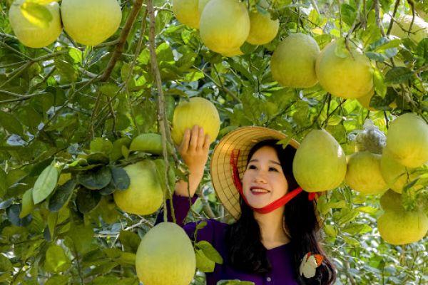 Phu Tho local cuisine