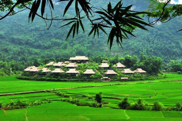 Moc Chau and wild cuisine of Tay Bac